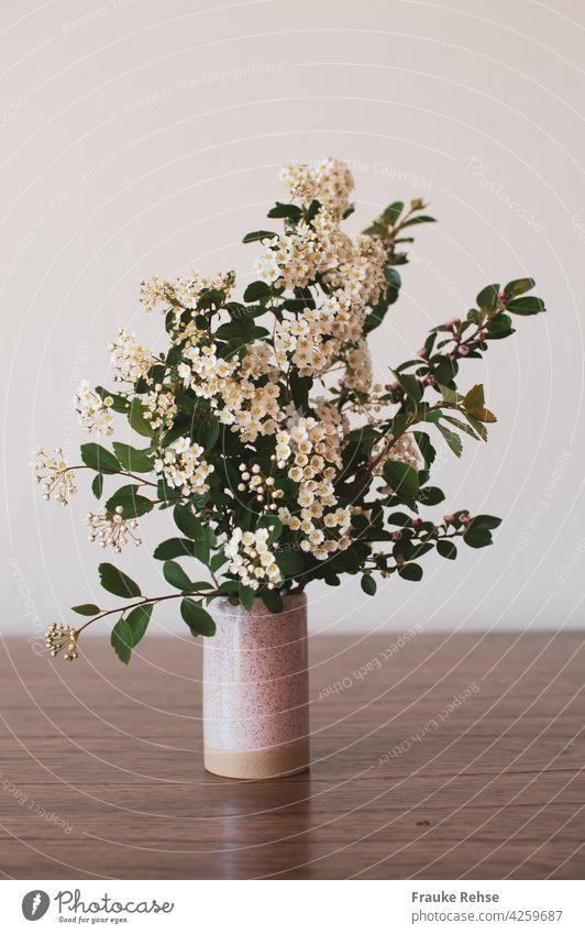 Blühender Spierstrauch in einer kleinen Vase auf einem Holztisch vor hellem Hintergrund Blumendekoration Blüten Dekoration weiße Blüten rosa Esstisch blühend