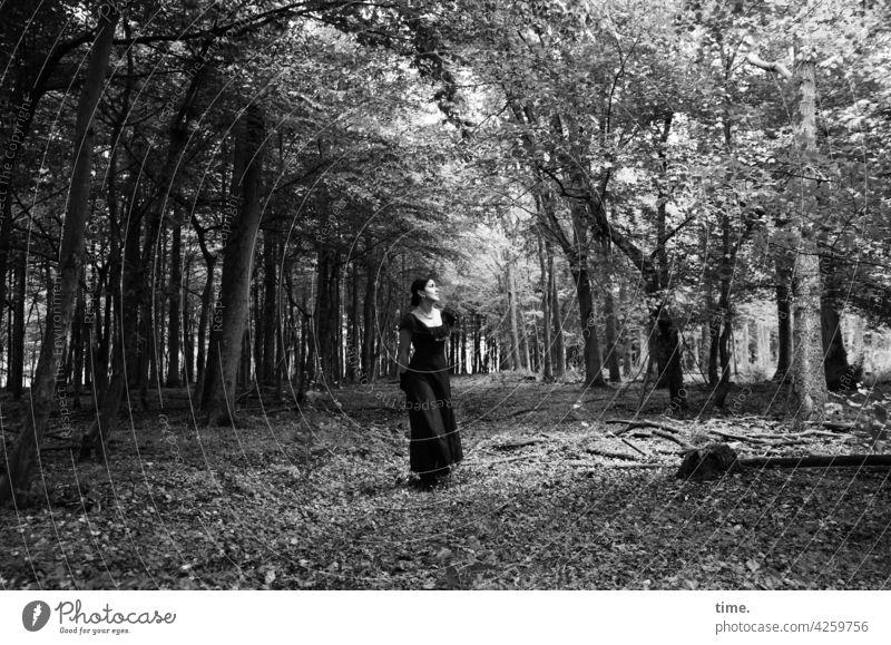 Estila wald kleid stehen beobachten bäume lichtung unterwegs frau feminin
