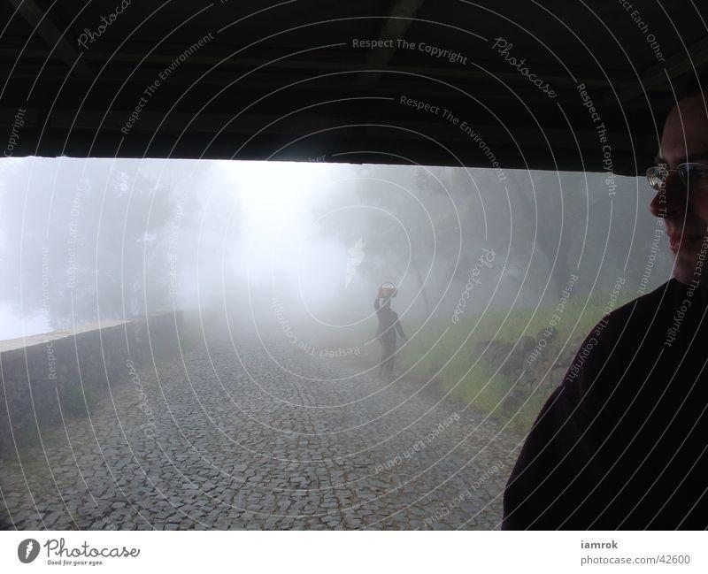 Der Nebel dunkel Einsamkeit Landstraße Wolken Berge u. Gebirge Schatten