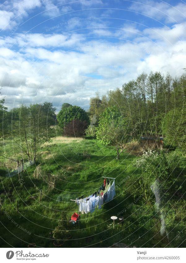 Idylle Wiese Gras grün Natur Landschaft Wäsche trocknen Wäscheleine idyllisch draußen Außenaufnahme Ruhe Sauberkeit