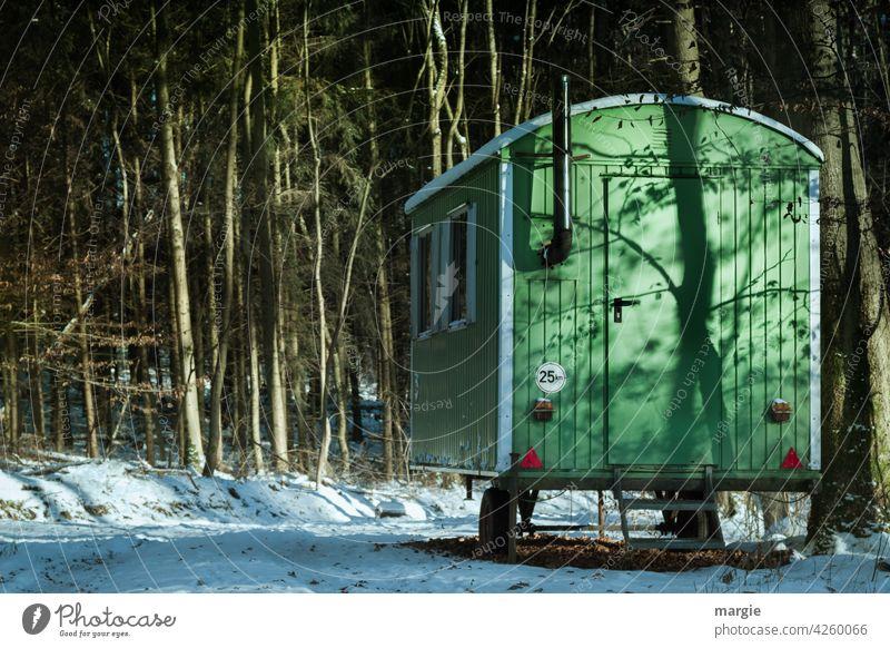 Bauwagen im Wald. Baum bauwagenszene Bäume Natur Schornstein Ofenrohr Umwelt Menschenleer Bauwaggon Waldboden Schnee Baumstamm Waldspaziergang Waldstimmung grün