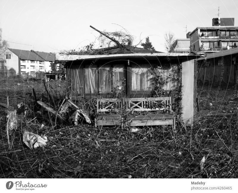 Altes Gartenhaus vor dem Abriss in einer ehemaligen Laubenkolonie auf neu ausgewiesenem Bauland in Lage bei Detmold in Ostwestfalen-Lippe, fotografiert in neorealistischem Schwarzweiß
