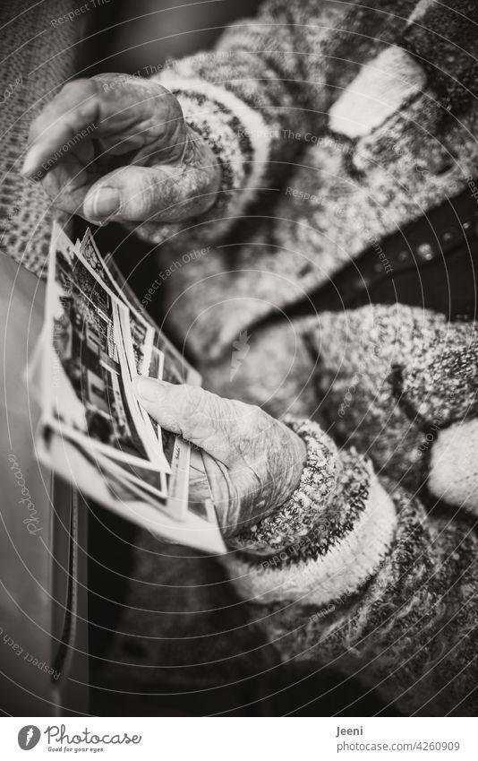 Fast hundert Jahre voller Erinnerungen - 400 - Alter Senior Seniorin 60 und älter 90s uralt Mensch Erwachsene Porträt Frau Dame Großmutter Weiblicher Senior