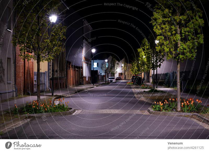 Nachts auf der Straße, kleine Seitenstraße mit geparkten Autos und Tulpen am Straßenrand nachts Gebäude Baum Bäume Deutschland Teltow-Fläming Straßenbelag