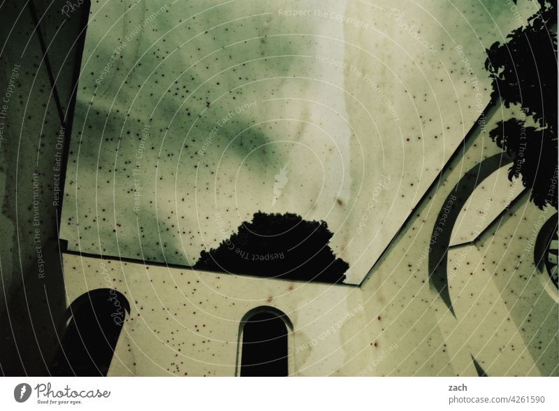 Dachschaden analoge Fotografie Scan analoge fotografie Experiment Lomografie Kirche Blume Pflanze Dorf Sommer Haus Wand Fenster Ruine kaputt