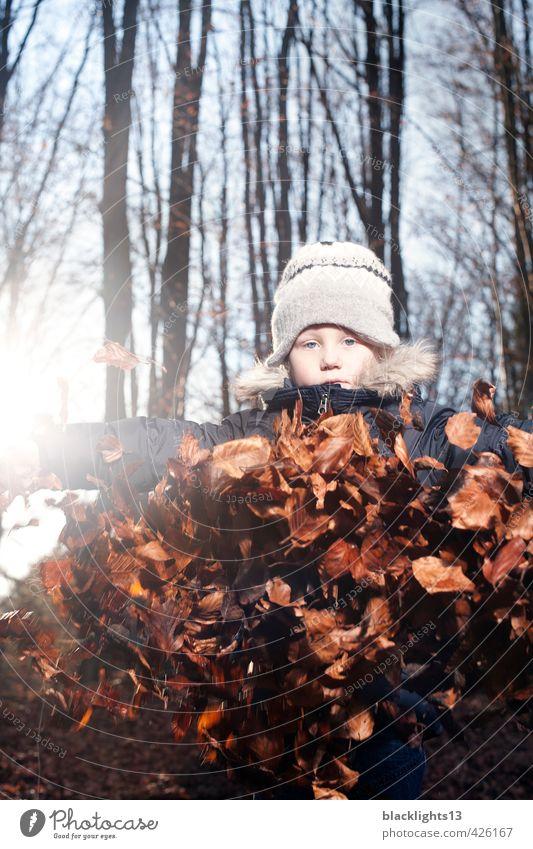 Herbst Spiel herbstlich Spielen Kind Blatt Jahreszeiten Jugendliche Junger Mann Gefühle Baum Wald Kindheit Kindheitserinnerung Leben Natur Umwelt Mensch