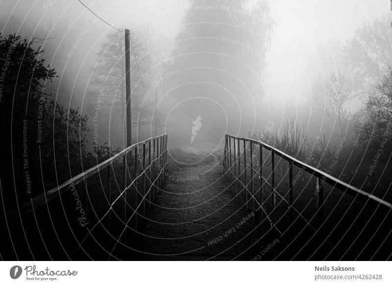 Eine Fußgängerbrücke über einen Fluss im Wald Herbst verschwommen Brücke Farbe Bach Damp Umwelt Erkundung fallen fließend Nebel neblig Steg wandern Landschaft