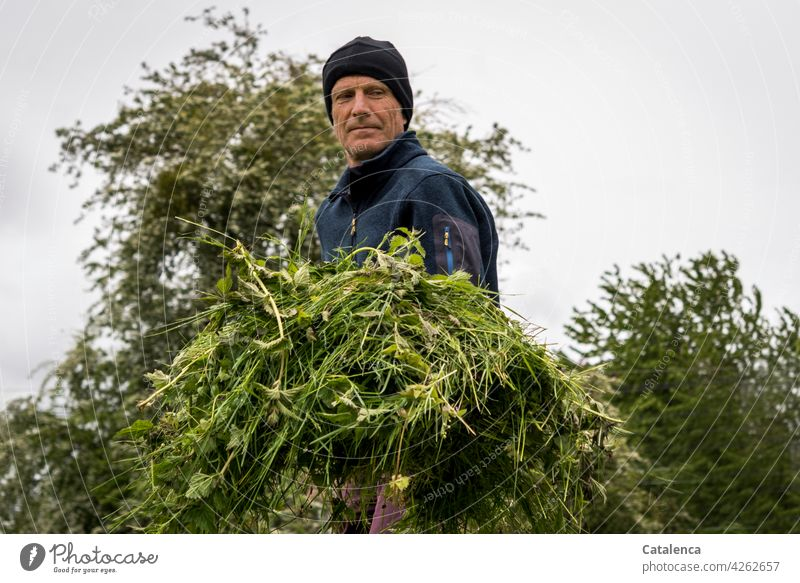 Mann bei Gartenarbeit im Frühling , an einem grauen, kalten Tag Wiese Rasen Tageslicht Gras Pflanze Natur Flora Person männlich Mütze geschnittenes Gras Himmel