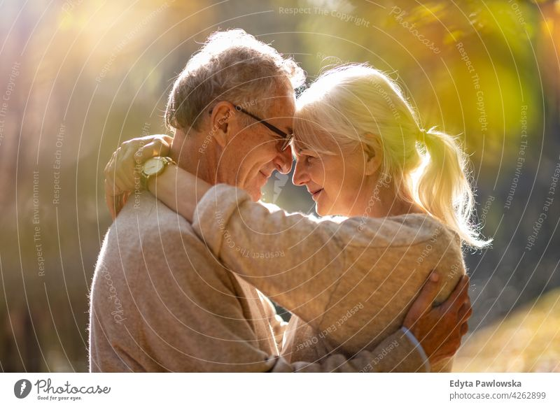Älteres Paar umarmt im Herbst Park Familie Frau Liebe Menschen im Freien Porträt Zusammensein Natur zwei schön fallen Bäume gelb Senior reif Senioren Rentnerin