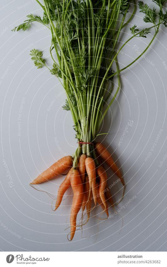 Karotten mit Grün Karottengrün biologisch Lebensmittel Gemüse frisch Bioprodukte Vegetarische Ernährung Gesundheit Gesunde Ernährung orange Betacarotin