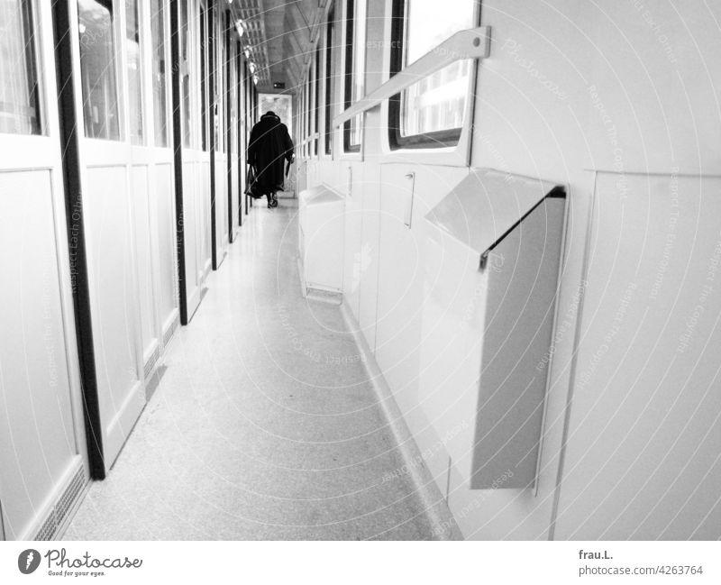 Im Zug Fotomontage allein Mensch Handtasche gebeugt Hut Mantel Frau Montage reisen Zugfahrt alt