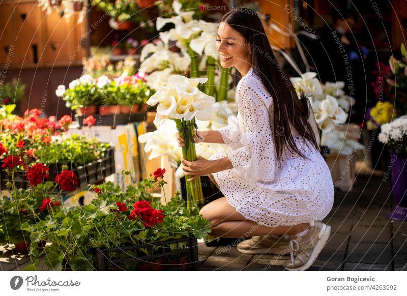 Junge Frau kauft Blumen auf dem Blumenmarkt Markt Schönheit kaufen schön jung grün Porträt Kunde Gartenarbeit Natur Laden Pflanze Erwachsener Kleid Jugend