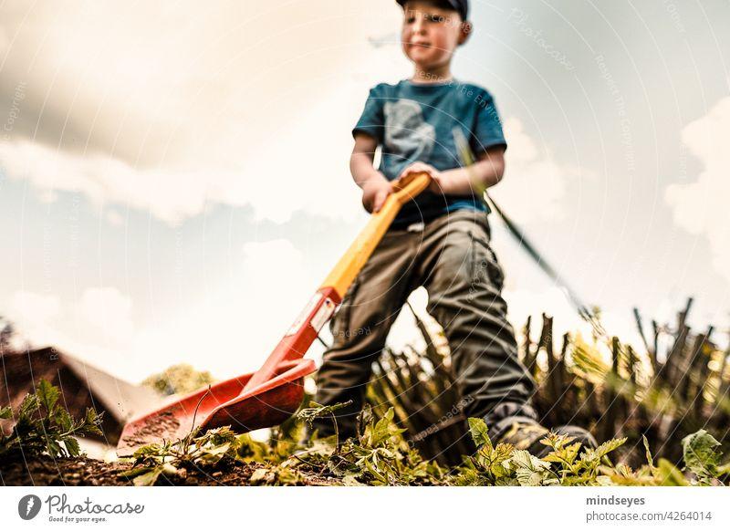 Junge bei der Arbeit weitwinkel Froschperspektive Arbeit & Erwerbstätigkeit Gartenarbeit Kindheit Spielen schaufeln Spielzeug beschäftigt Freude Kindergarten