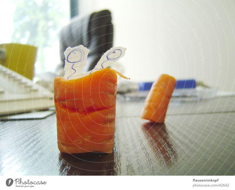 holzmöhre Gesundheit Papier Schreibtisch Fressen Fühler Fantasygeschichte Möhre Wurm