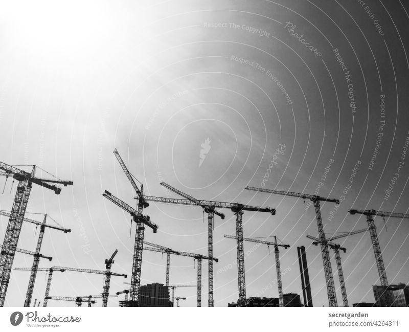 Kranballett Schwarzweißfoto Menschenleer Außenaufnahme Baustelle Wolken Arbeit & Erwerbstätigkeit Industrie Wirtschaft bauen Tag Himmel Technik & Technologie