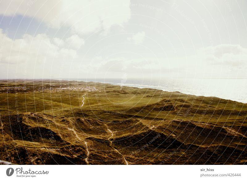 Düne besiedelt Natur Ferien & Urlaub & Reisen blau grün weiß Meer Einsamkeit gelb Küste Freiheit gold Fernweh Düne unten Sommerurlaub Sandstrand