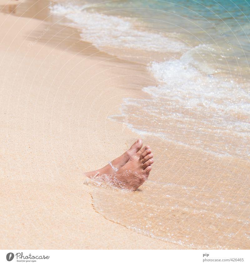 strandgut Mensch Fuß Zehen Natur Sand Wasser Sommer Schönes Wetter Wellen Küste Strand Meer exotisch lustig bizarr Ferien & Urlaub & Reisen Freizeit & Hobby