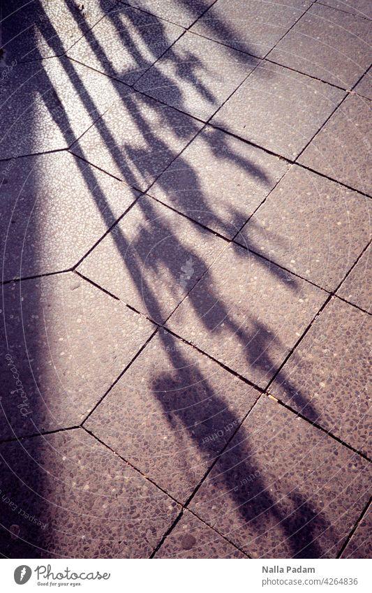 Schatten ihrer selbst Olympus Farbe Berlin Straße E-Scooter Gehweg Platten Reihe Verkehr Verkehrsmittel Außenaufnahme Mobilität E-Roller Fahrzeug E-Mobilität