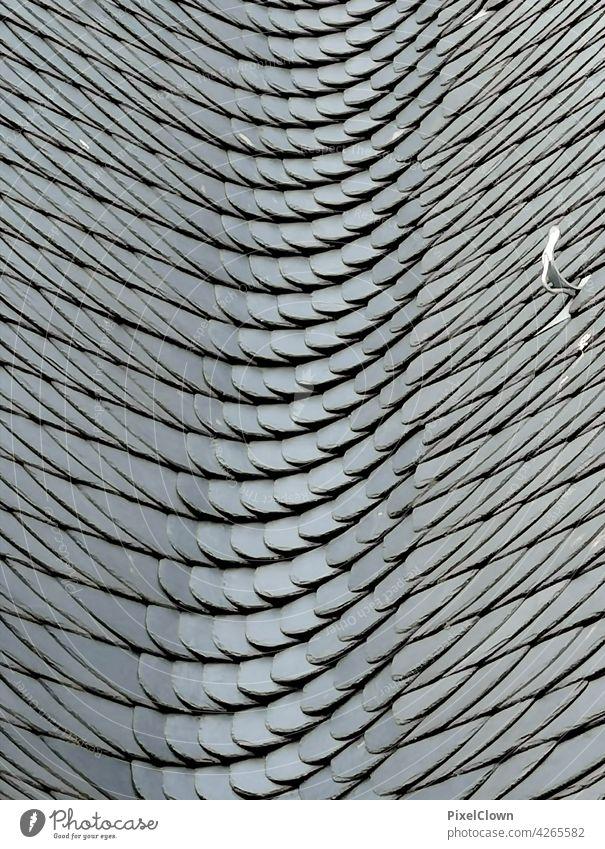 Schieferplatten Wand Mauer Architektur Strukturen & Formen Bauwerk Fassade Gebäude Muster Haus abstrakt grau Stadt Außenaufnahme Gedeckte Farben Menschenleer