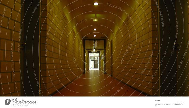 Licht ... Tiefenschärfe Ausgang Flur Architektur Schule Tür Innenbeleuchtung Schulgebäude Gang Innenaufnahme