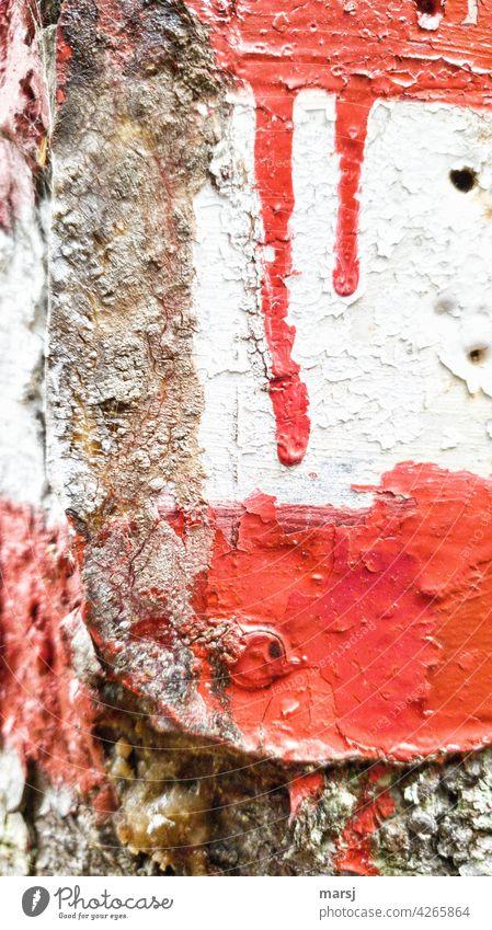rot-weiß-rot. Rote Farbtränen auf weißem Grund. wandern mehrfarbig Farbfoto Fußweg Ferien & Urlaub & Reisen Kontrast Wegweiser Hinweisschild