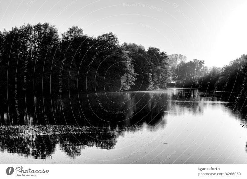 Sonnenuntergang an einem alten Ems Arm Emsland Abend Schwarzweißfoto Reflektion Reflexion & Spiegelung Landschaft Norddeutschland Lichteinfall Lichtschein
