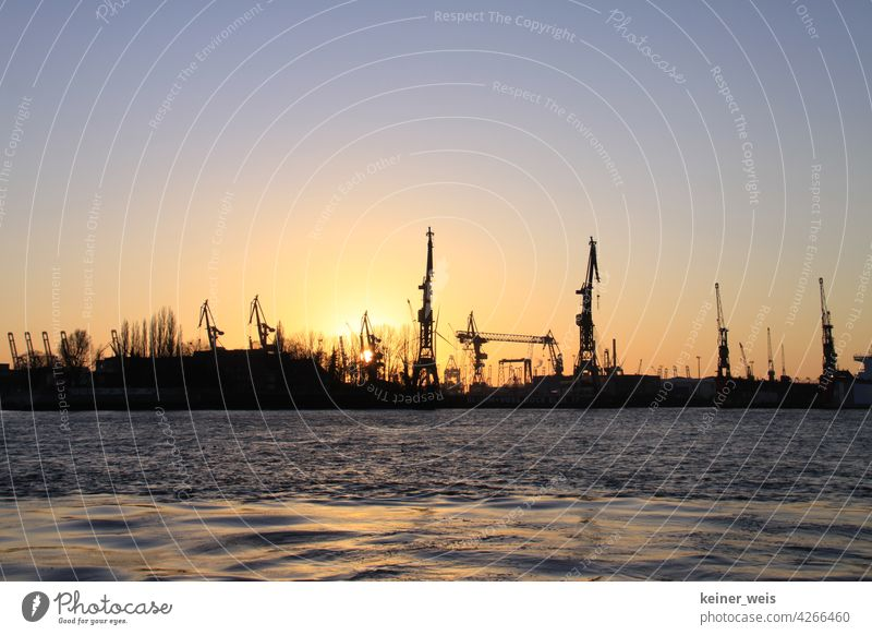 Frachtkräne im Containerhafen Hamburg im Sonnenuntergang frachtkran Cargo Logistik Frachthafen silhouetten Wasser Elber Binnenhafen Hafen Welthandel Kräne viele