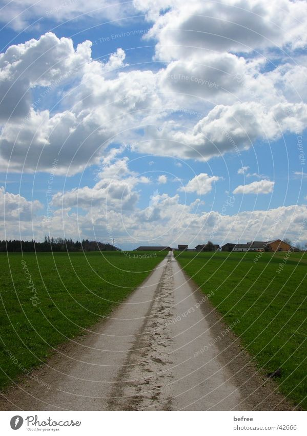 road to nowhere - part 2 Landschaft Blauer Himmel dunkle Wolken