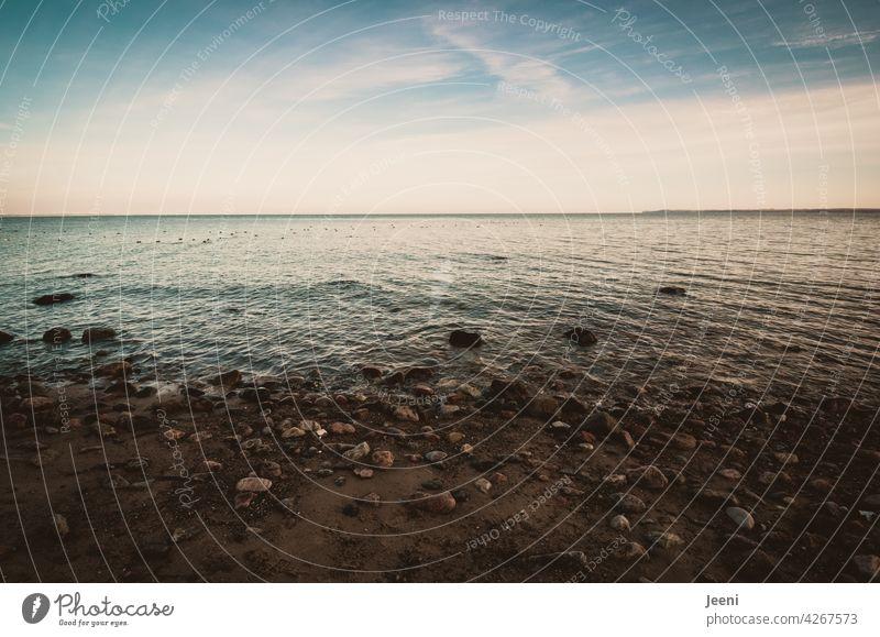 Steinig, nass und zartblau Ostsee ostseeküste Steilküste Küste Küstenlinie Blick weiter Blick Ferne Fernweh Himmel himmelblau Wolken Wolkenloser Himmel weiß