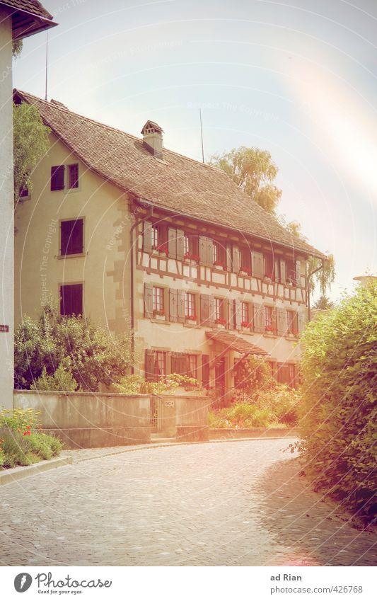 Seltsames Licht Himmel alt Stadt Sommer Haus Umwelt Wand Mauer Gebäude Architektur Fassade Treppe glänzend Sträucher Schönes Wetter ästhetisch