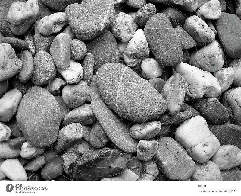 Steine Kieselsteine Strand Schwarzweißfoto TIF Nahaufnahme