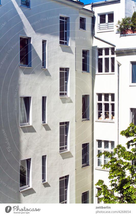 Berliner Hinterhoffassade in der Vormittagssonne altbau außen brandmauer fenster haus hinterhaus hinterhof innenhof innenstadt mehrfamilienhaus menschenleer