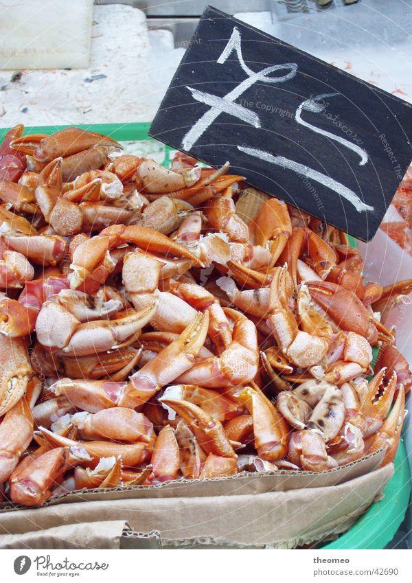 Krebsscheren 7,-€ Ernährung frisch Markt Krebstier Krabbe