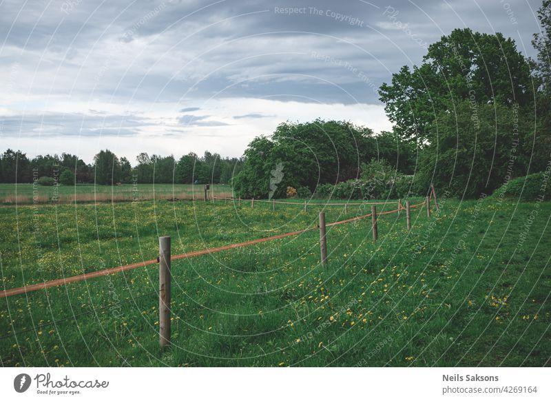 Elektrozaun um eine Weide Landschaft Zaun Gras Himmel Feld Natur Bauernhof grün Sommer Wiese ländlich blau Ackerbau Baum Wolken hölzern Cloud Bäume Ranch