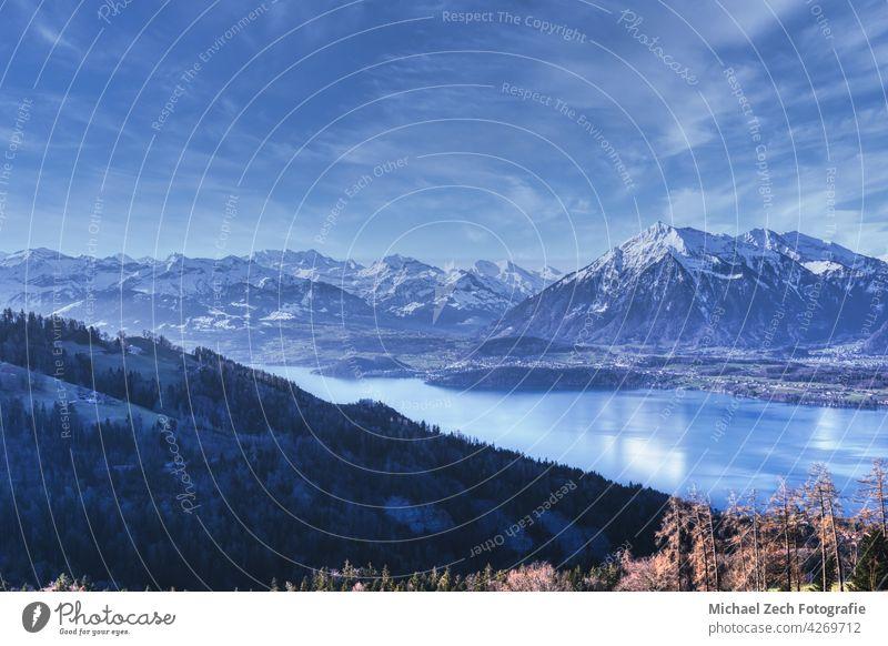 Blick über den Thunersee auf den Niesen und die Schweizer Alpen Landschaft reisen Anziehungskraft interlaken Natur Urlaub Tourismus See alpin Wasser
