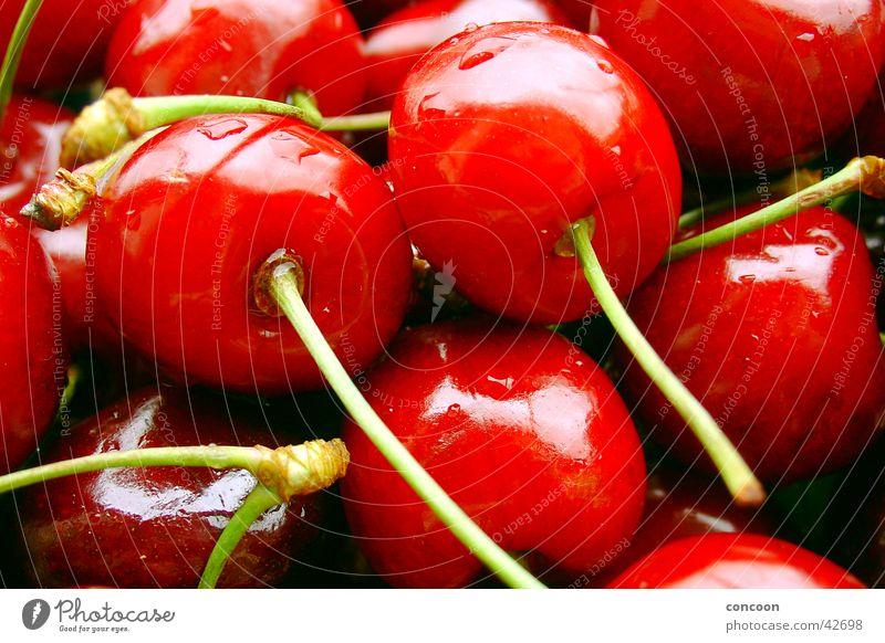 Rot & knackig II Kirsche nass saftig frisch Wassertropfen Sommer prall