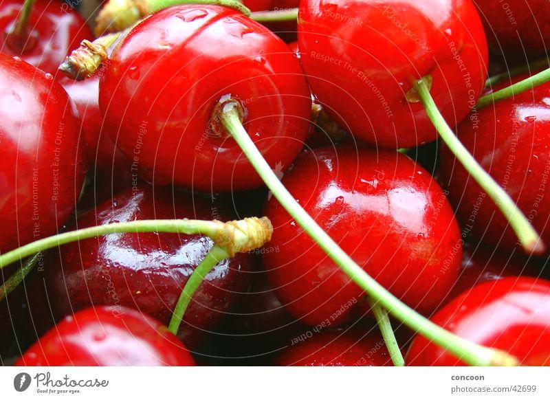 Rot & knackig I Kirsche Sommer Wassertropfen lecker frisch süß glänzend saftig Frucht