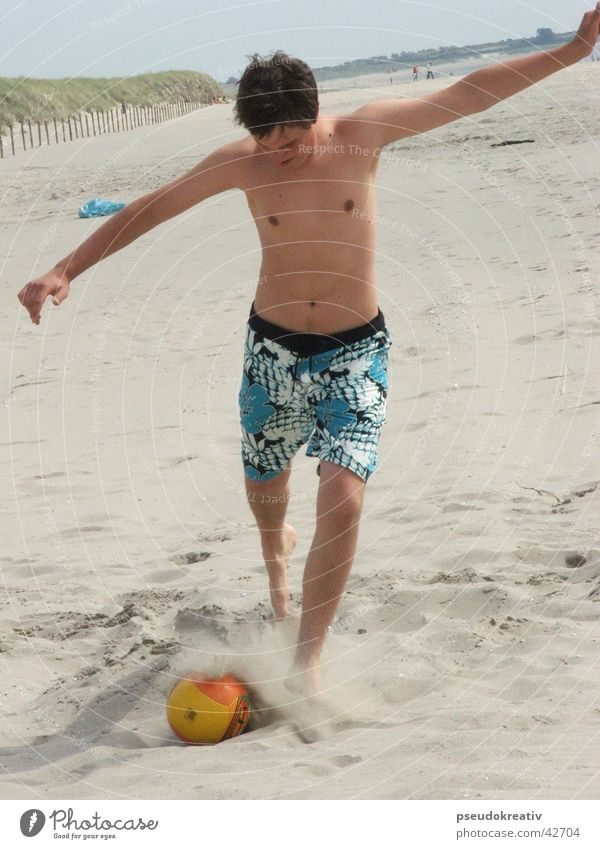 beatle Strand Aktion Spielen Sport Fußball Ball Volleyball Sand Schuss