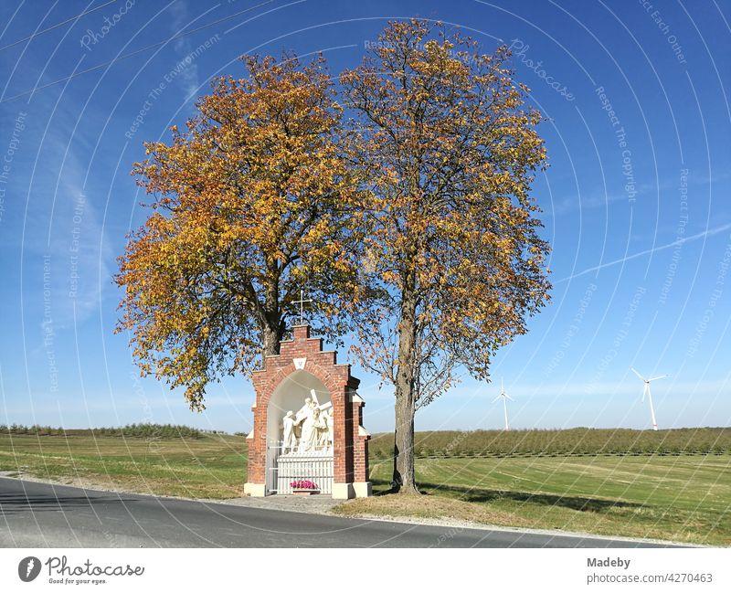 Herbstliche alte Bäume mit religiösem Denkmal vor blauem Himmel an einem alten Pilgerweg in Stromberg bei Oelde im Kreis Warendorf im Münsterland Westfalen
