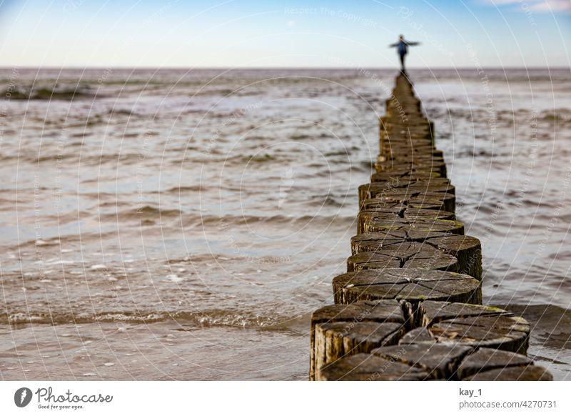 Balancierend auf einer Buhne am Ostseestrand Buhnen Holz Wasser Strandspaziergang Mecklenburg-Vorpommern Landschaft Ostseeküste Meer Natur Küste