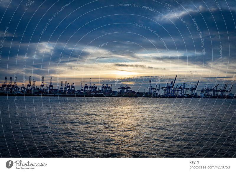 Containerterminal im Hamburger Hafen am Abend Abenddämmerung Schifffahrt Güterverkehr & Logistik Kran Wirtschaft Elbe Menschenleer Hafenstadt Außenaufnahme