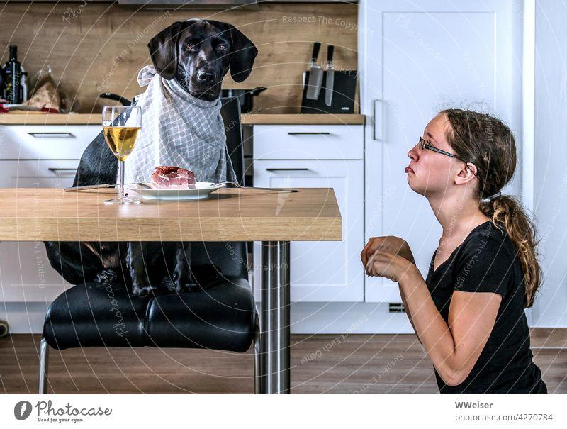 Beziehungsweise: Hund und Frauchen haben heute die Rollen getauscht Kind Mädchen Essen Tisch Mittagessen Rollentausch wechseln verkehrtrum Spiel Rollenspiel
