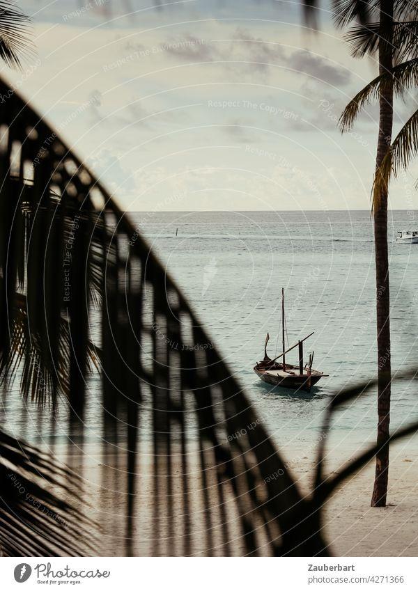 Traditionelles Segelboot auf den Malediven vor einem Strand mit Palmen Boot Holzboot Meer Wasser Ferien & Urlaub & Reisen Küste Sand Insel Lagune tropisch