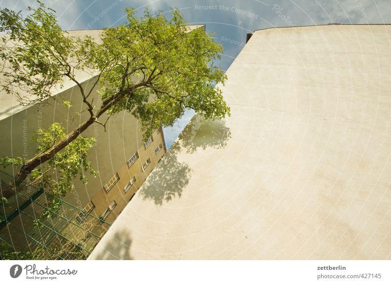 Schöneberg Natur Himmel Sommer Klima Klimawandel Wetter Schönes Wetter Baum Stadt Hauptstadt Stadtzentrum Haus Bauwerk Gebäude Architektur Mauer Wand Fassade