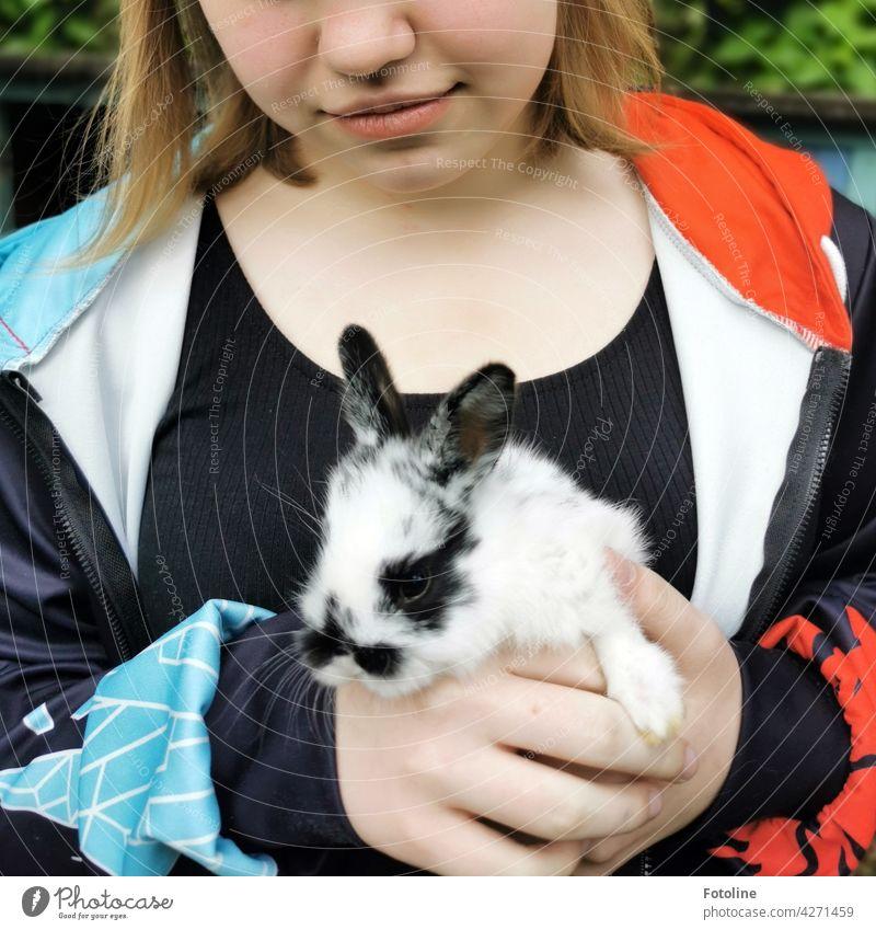 Das Mädchen ist ganz verliebt in dieses kleine süße und neugierige Kaninchen. Hase & Kaninchen Tier Ohr Fell Haustier niedlich Farbfoto Tierporträt Tag