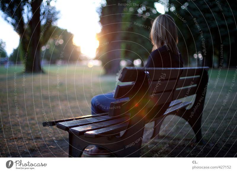 blick nach vorn Mensch Frau Natur Jugendliche Sommer Sonne Baum Einsamkeit Erholung Landschaft Junge Frau ruhig Erwachsene Umwelt Wiese feminin