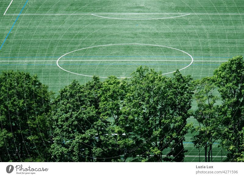 grün von oben, ein menschenleeres Fussballfeld. Davor alte Bäume, über allem Sonnenschein gerade Linien Fußball Fußballfeld Rasen Sportplatz hell Spielen