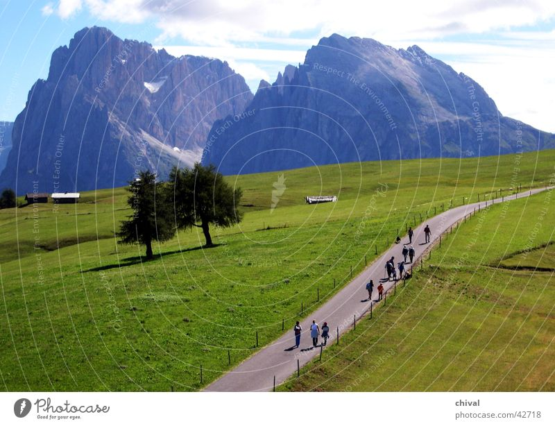 Langkofel Wiese Berge u. Gebirge wandern Felsen Ausflug Alpen Alm Dolomiten Südtirol Langkofel Plattkofel Seiser Alm