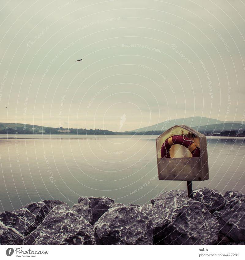 Himmel Natur Ferien & Urlaub & Reisen alt Wasser Meer Einsamkeit Tier dunkel Umwelt Traurigkeit Küste Schwimmen & Baden natürlich Felsen Vogel