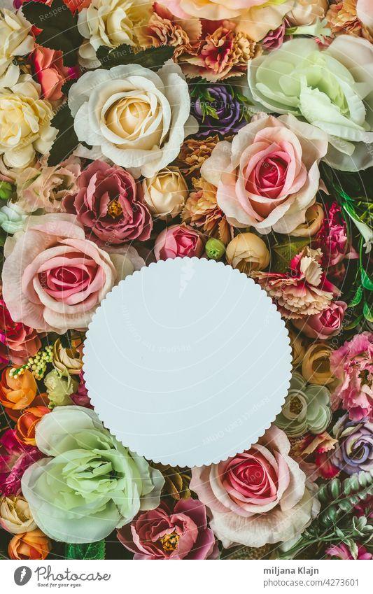 Schöne bunte Blumen Wand Hintergrund, mit weißen Kreis Grußkarte mit Kopie Raum; Frühling, Hochzeit, Jubiläum oder Florist Grußkarte Werbung Jahrestag Bett